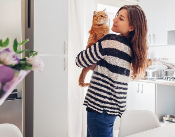 Mačke se emotivno vežu za ljude puno više nego psi