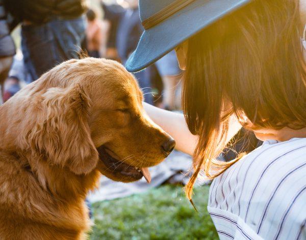 Ove zanimljivosti o psima sigurno niste znali