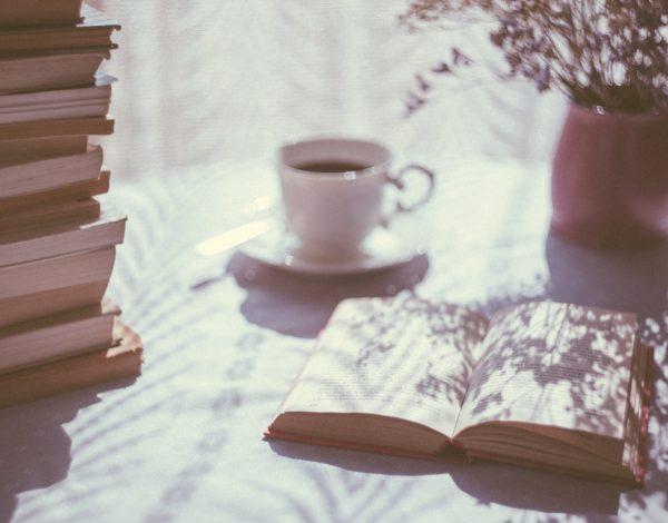 Ljeto je pravo vrijeme za romane Bekima Sejranovića, a ovo su oni kojima ćemo se zauvijek vraćati