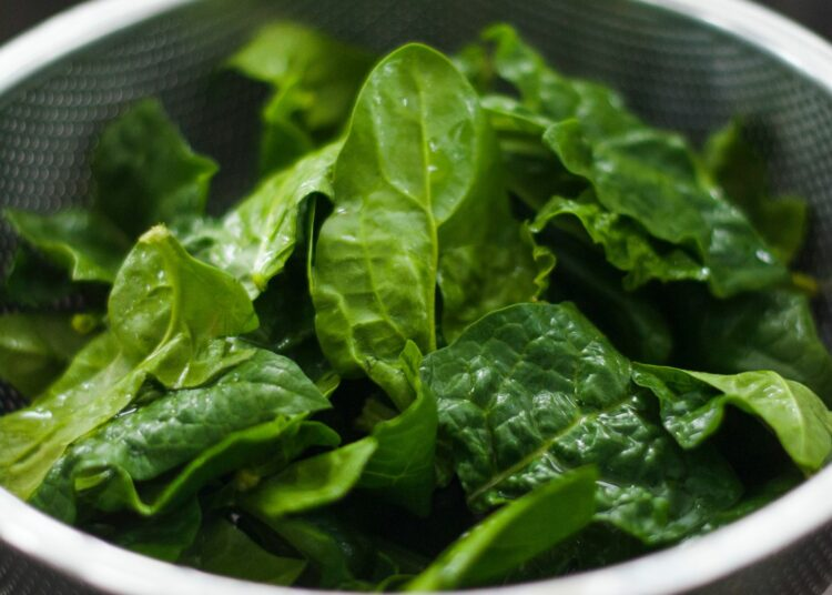 hrana, zdravlje, spinat