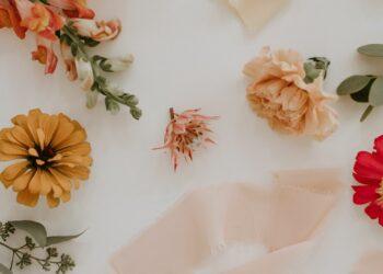 suho cvijeće